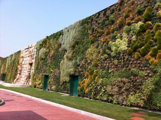Jardim verticais como fazer um destes na sua casa for Architettura verde